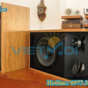 Loa karaoke Bose 301III