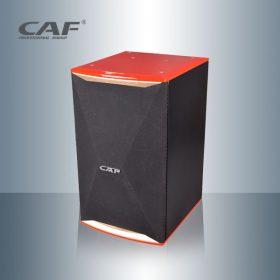 Loa full đơn CF TA-10