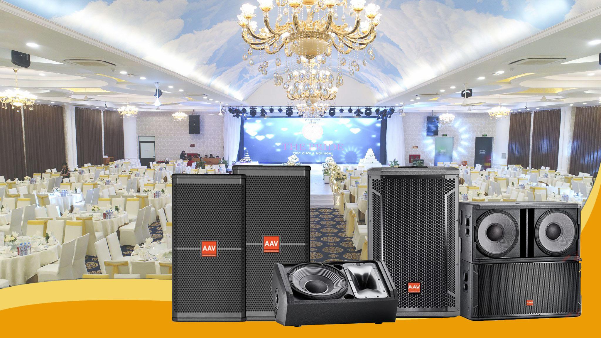 Loa hội trường loa sân khấu loa đám cưới – Việt Mới Audio