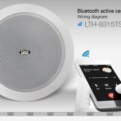 Loa âm trần bluetooth 8315