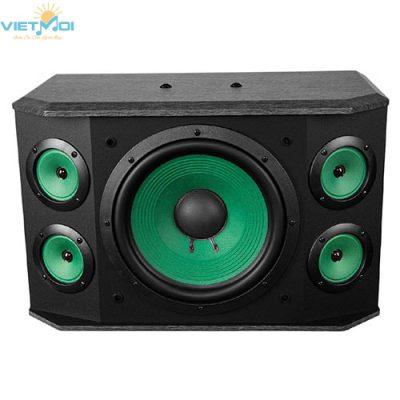Loa Karaoke Paramax P1000