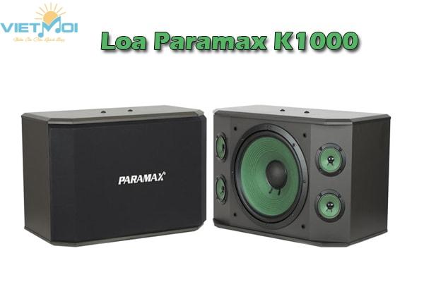 Loa karaoke Paramax K1000