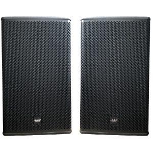 Loa AAP audio AKP12