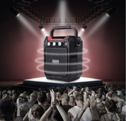 Loa karaoke xách tay K99