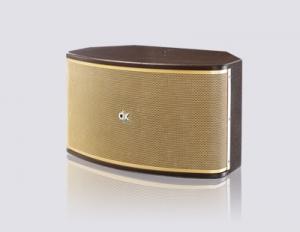 Bộ dàn karaoke gia đình DK-215 được cung cấp bởi Việt Mới Audio cho karaoke gia đình, karaoke kinh doanh
