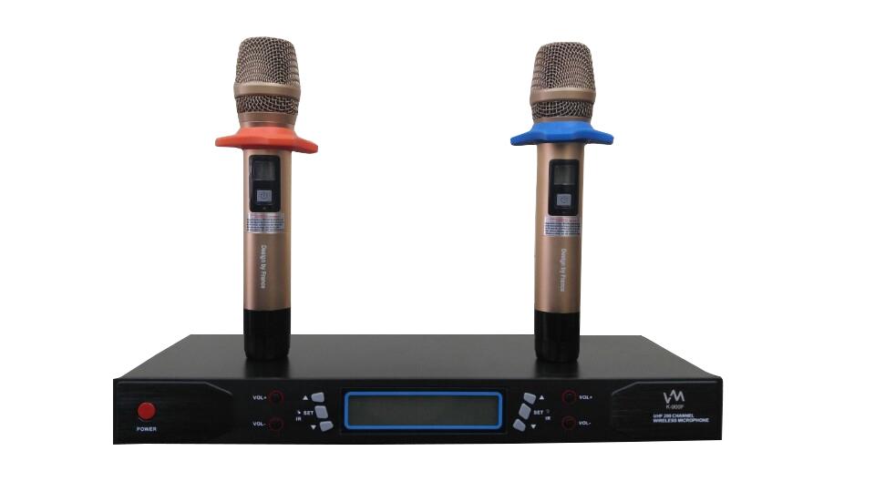 dan-karaoke-gia-dinh-chinh-hang