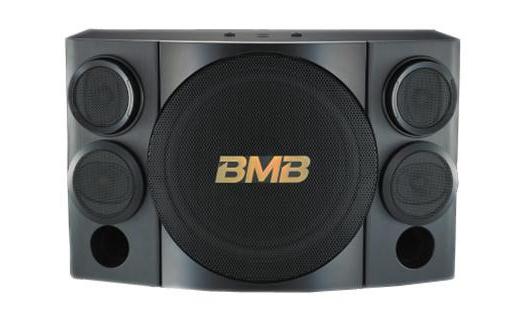 Loa karaoke BMB CSE 310 chất lượng cao